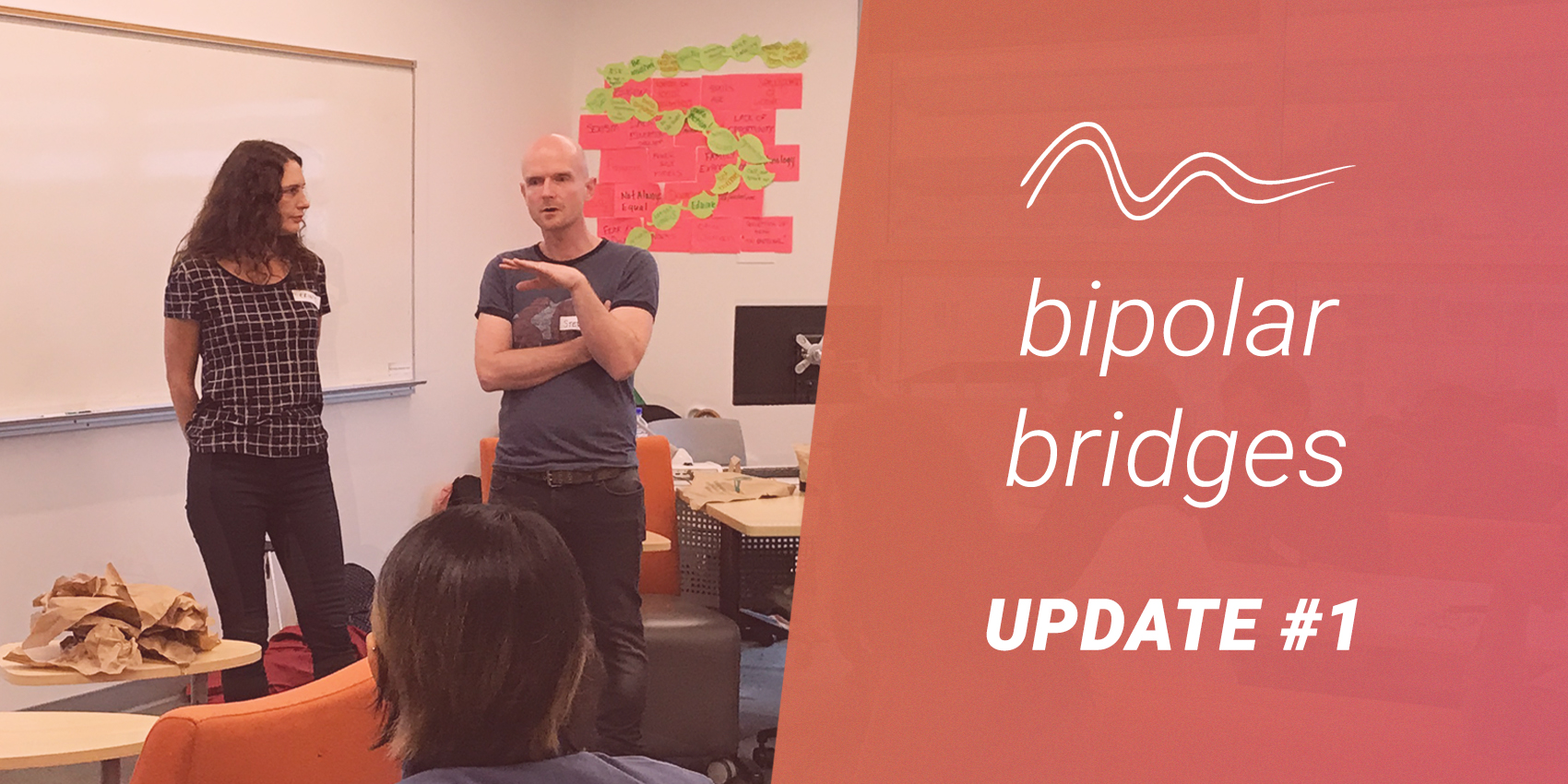 Bipolar Bridges Update 1: Our First Whiteboarding Session!