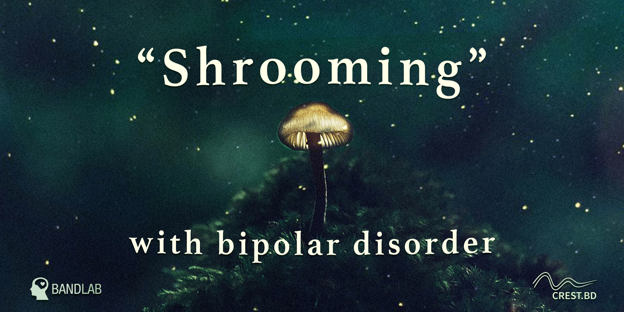 """Shrooming"" with Bipolar Disorder: A Psilocybin Survey Study"
