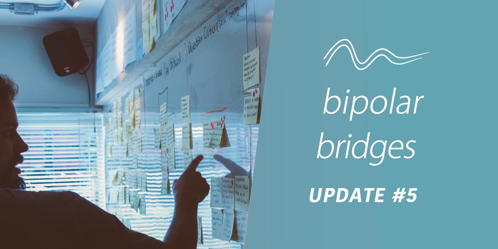 Bipolar Bridges Update 5: Introducing The Bipolar Bridges Advisory Group