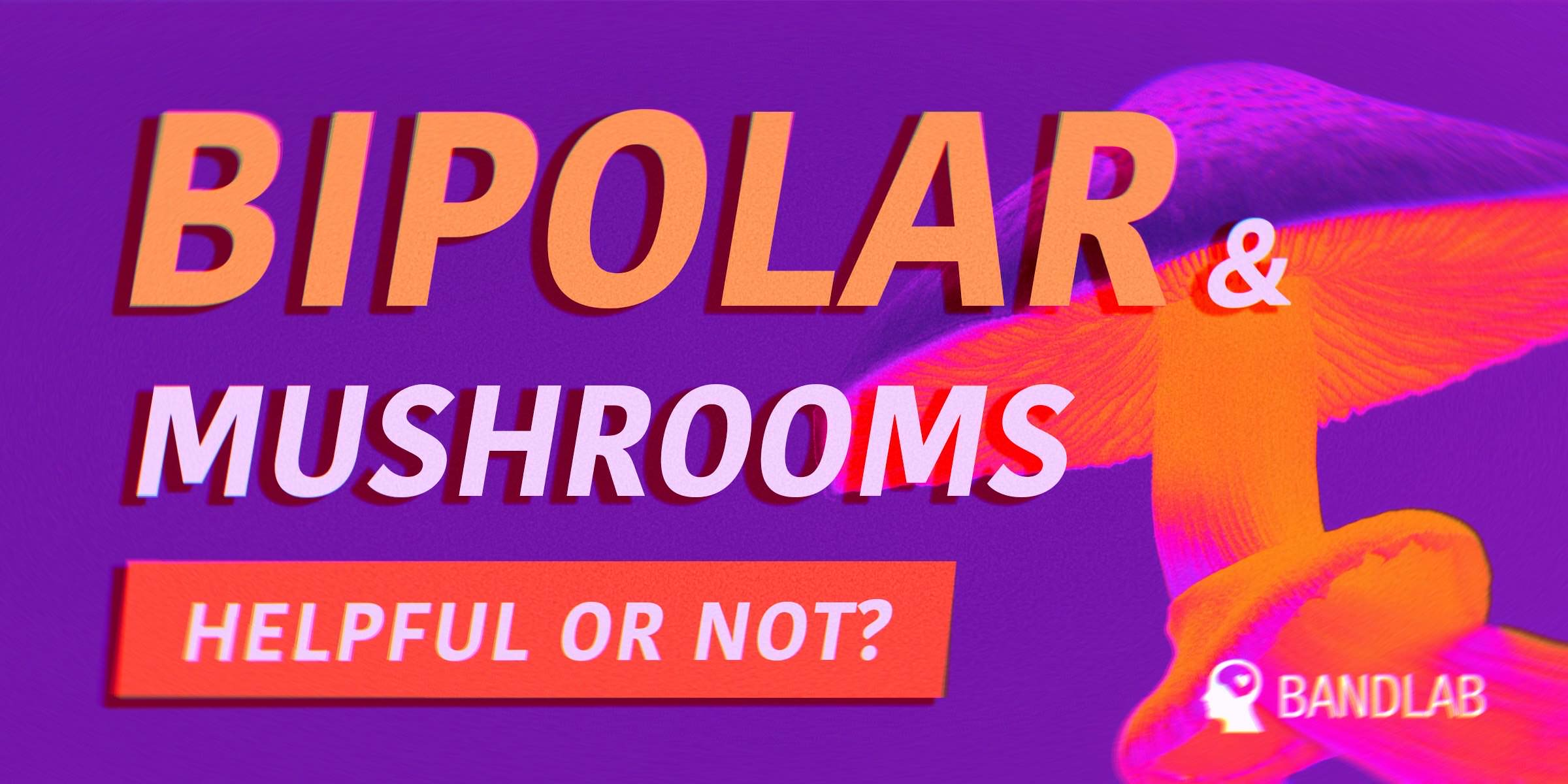 """Survey Update: Risks and benefits of """"magic mushrooms"""" in bipolar disorder"""